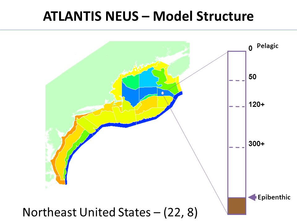 ATLANTIS NEUS – Model Structure 0 50 120+ 300+ Sediment Epibenthic Pelagic Northeast United States – (22, 8)