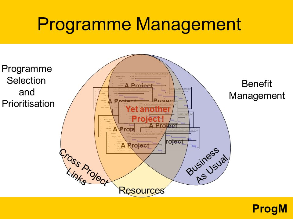 ProgM Programme Selection and Prioritisation Benefit Management Programme Management A Project Yet another Project .
