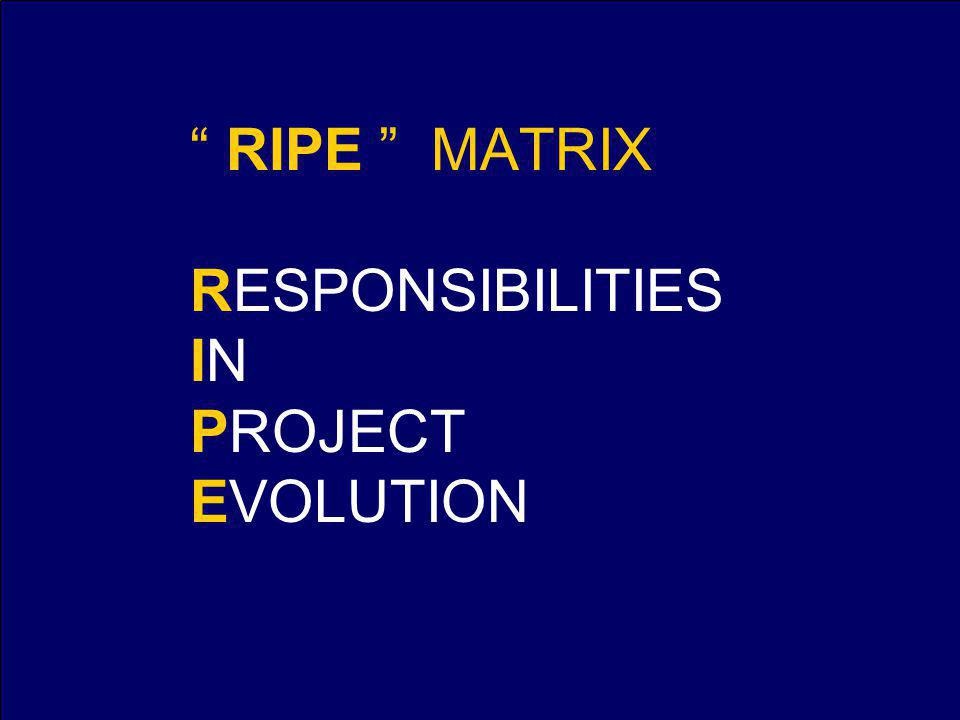 RIPE MATRIX RESPONSIBILITIES IN PROJECT EVOLUTION