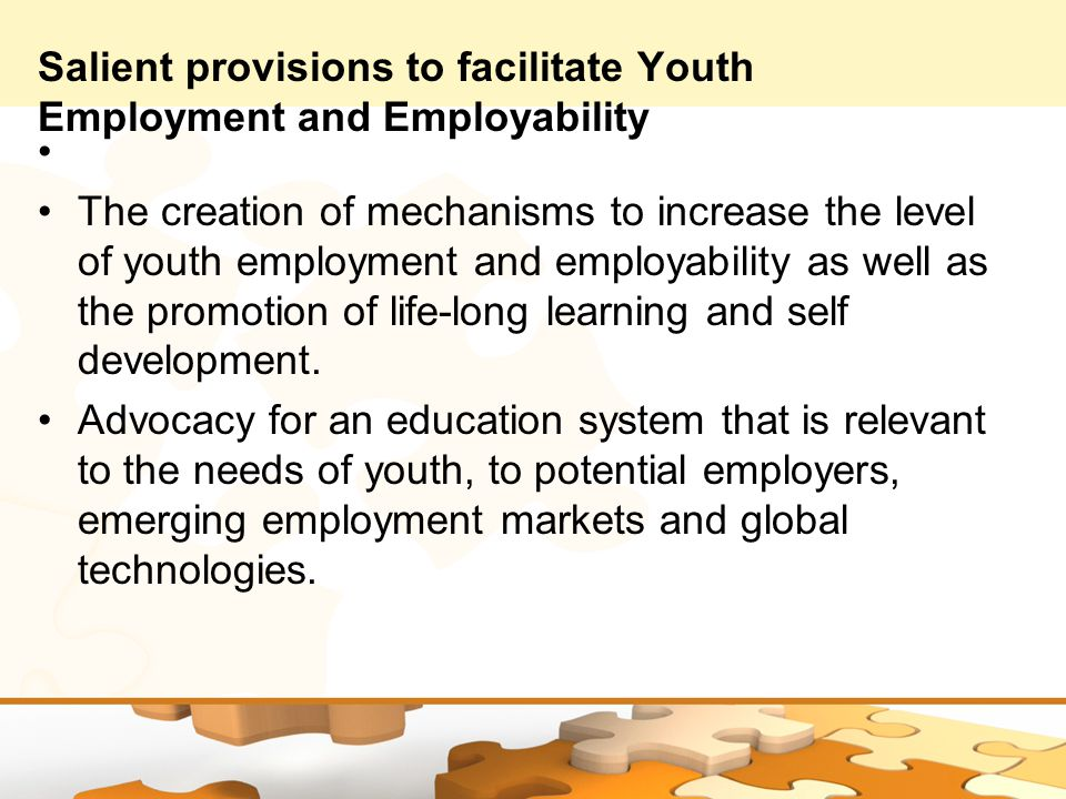 Salient provisions to facilitate Youth Employment and Employability The creation of mechanisms to increase the level of youth employment and employability as well as the promotion of life-long learning and self development.