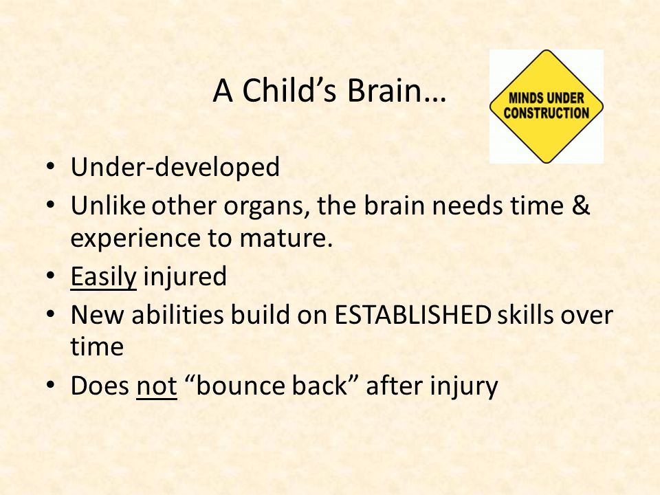 A Childs Brain… Under-developed Unlike other organs, the brain needs time & experience to mature.