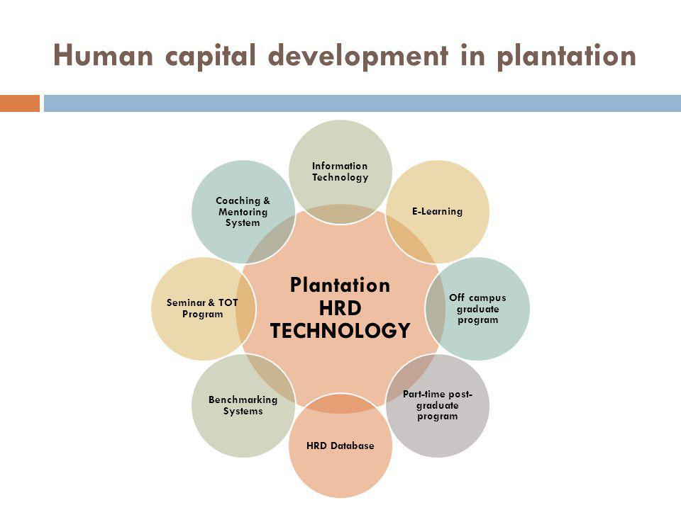 Human capital development in plantation Plantation HRD TECHNOLOGY Information Technology E-Learning Off campus graduate program Part-time post- graduate program HRD Database Benchmarking Systems Seminar & TOT Program Coaching & Mentoring System