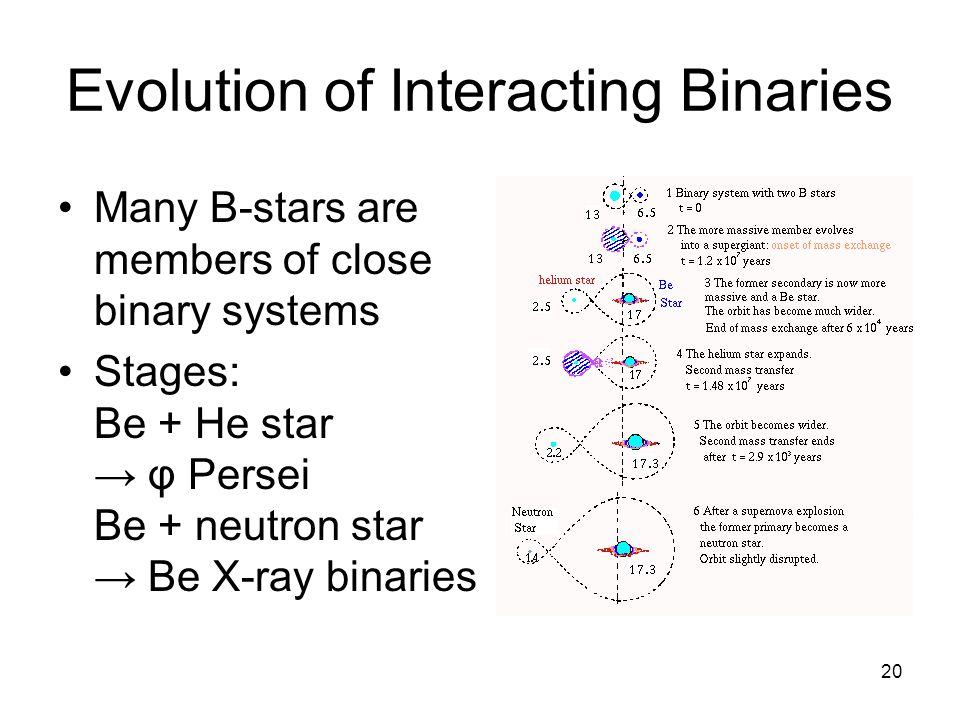 20 Evolution of Interacting Binaries Many B-stars are members of close binary systems Stages: Be + He star φ Persei Be + neutron star Be X-ray binaries