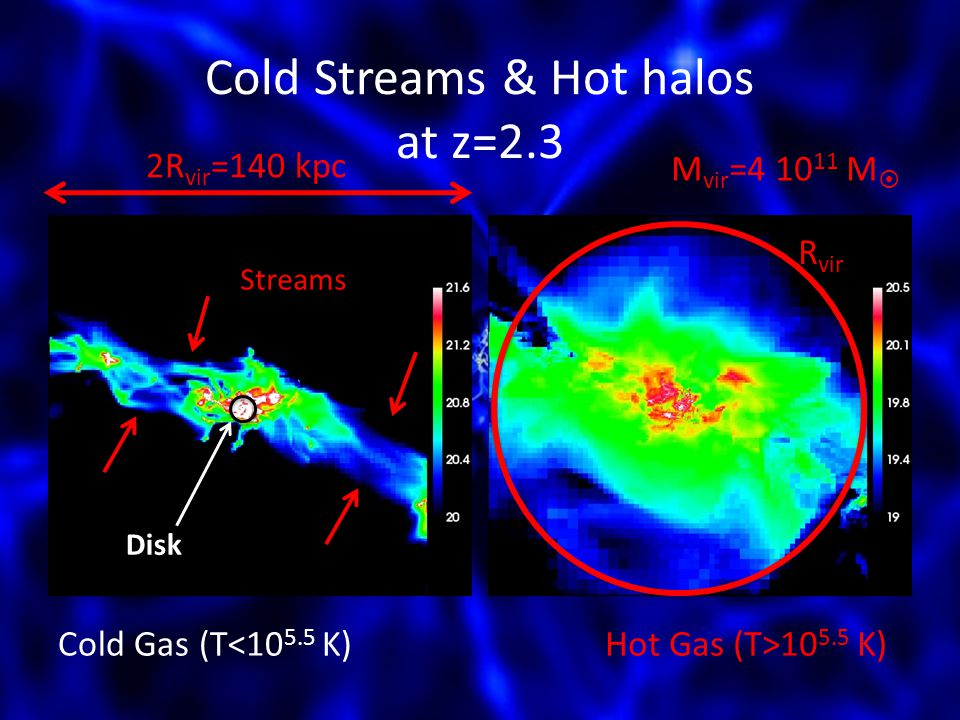 Cold Streams & Hot halos at z=2.3 2R vir =140 kpc M vir =4 10 11 M Cold Gas (T<10 5.5 K)Hot Gas (T>10 5.5 K) R vir Disk Streams