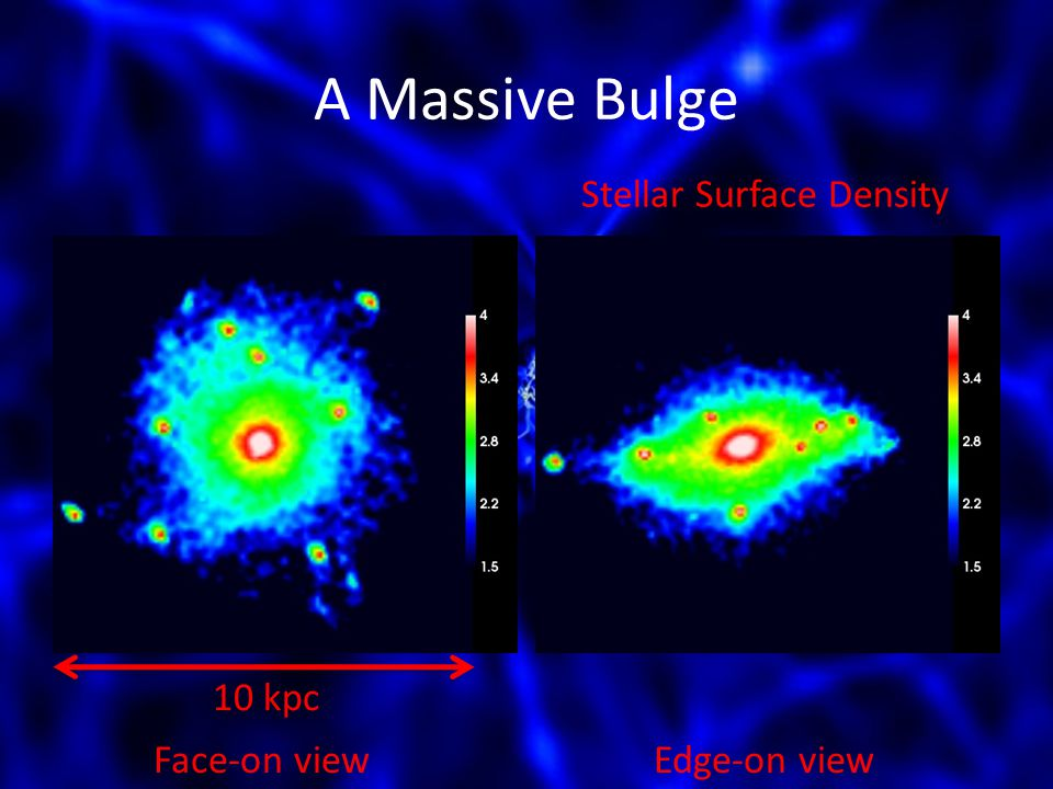 A Massive Bulge 10 kpc Face-on viewEdge-on view Stellar Surface Density