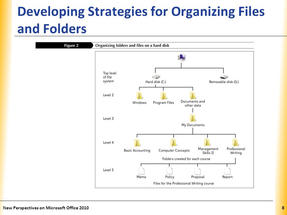 XP Developing Strategies for Organizing Files and Folders New Perspectives on Microsoft Office 20108