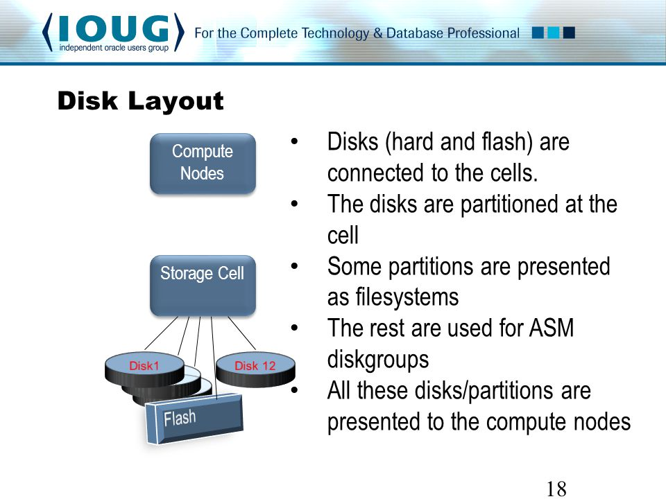 Disk Layout 18 Storage Cell Compute Nodes Disks (hard and flash) are connected to the cells.