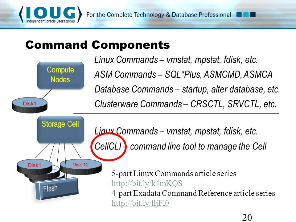 Command Components 20 Storage Cell Compute Nodes Linux Commands – vmstat, mpstat, fdisk, etc.