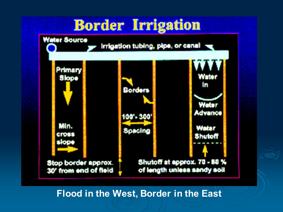 Flood in the West, Border in the East
