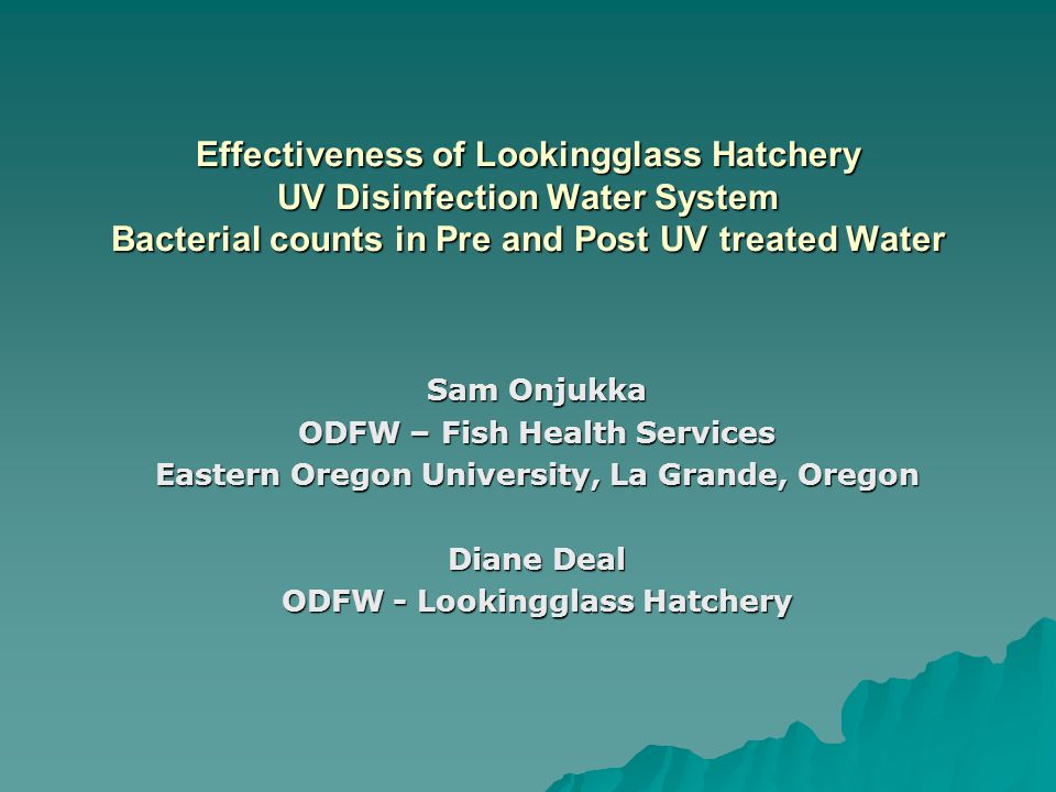 Effectiveness of Lookingglass Hatchery UV Disinfection Water System Bacterial counts in Pre and Post UV treated Water Sam Onjukka ODFW – Fish Health Services Eastern Oregon University, La Grande, Oregon Diane Deal ODFW - Lookingglass Hatchery