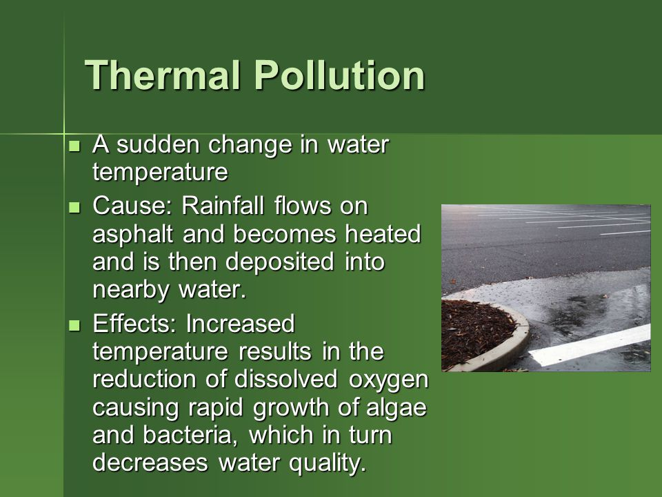 Thermal Pollution A sudden change in water temperature A sudden change in water temperature Cause: Rainfall flows on asphalt and becomes heated and is then deposited into nearby water.