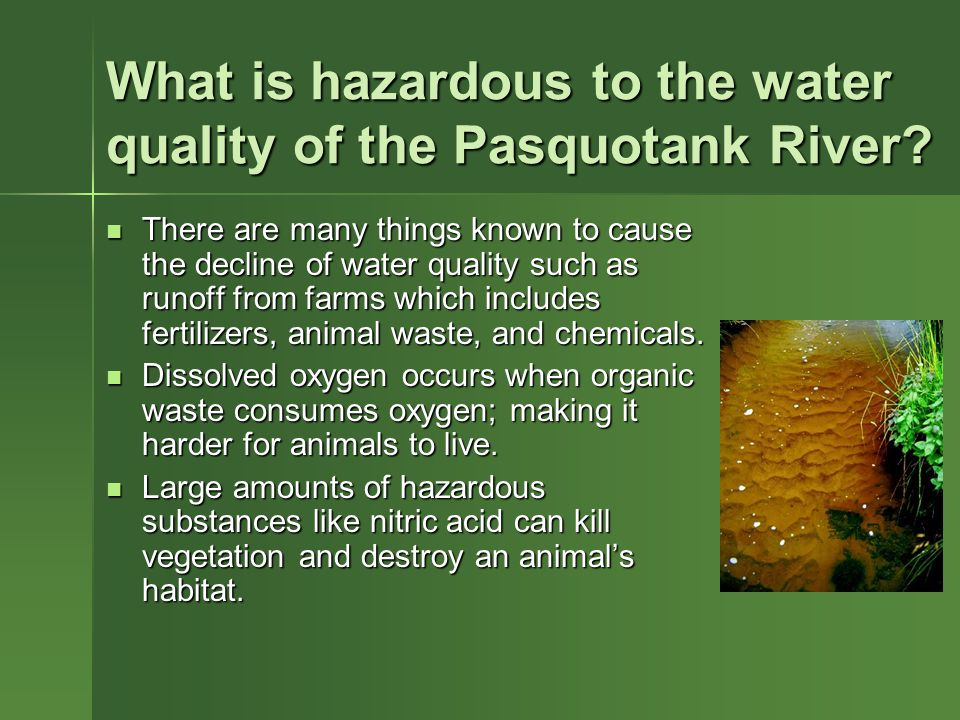 What is hazardous to the water quality of the Pasquotank River.
