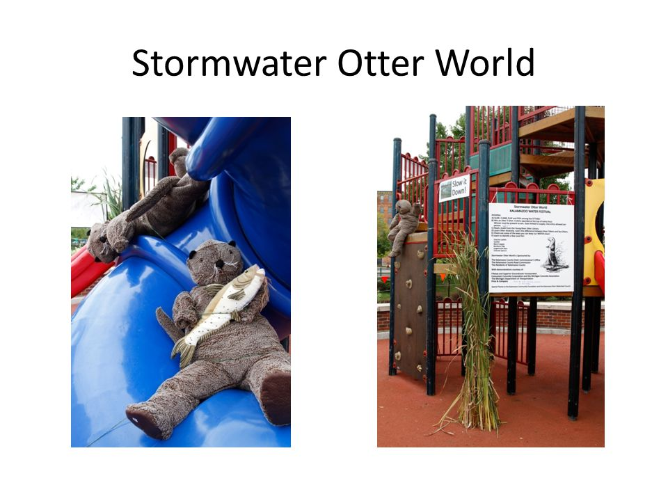 Stormwater Otter World