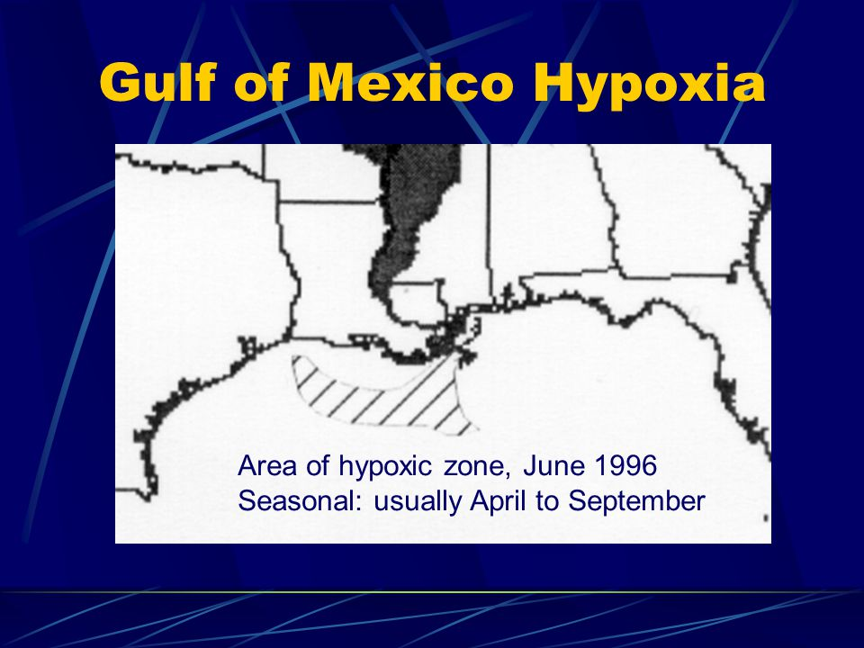 Gulf of Mexico Hypoxia Area of hypoxic zone, June 1996 Seasonal: usually April to September