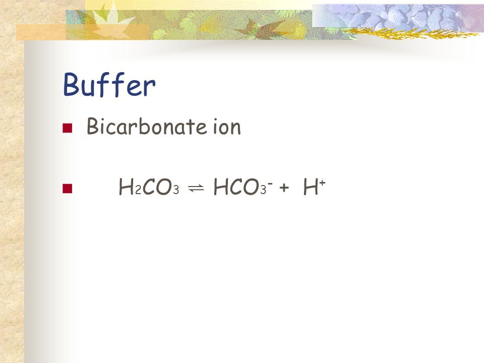 Buffer Bicarbonate ion H 2 CO 3 HCO 3 - + H +