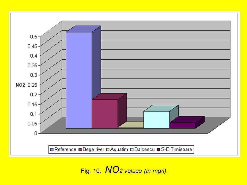 Fig. 10. NO 2 values (in mg/l).