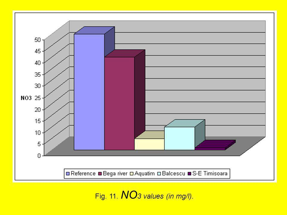 Fig. 11. NO 3 values (in mg/l).
