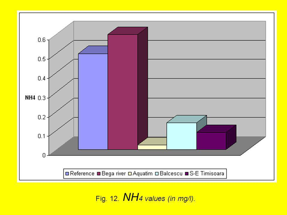 Fig. 12. NH 4 values (in mg/l).