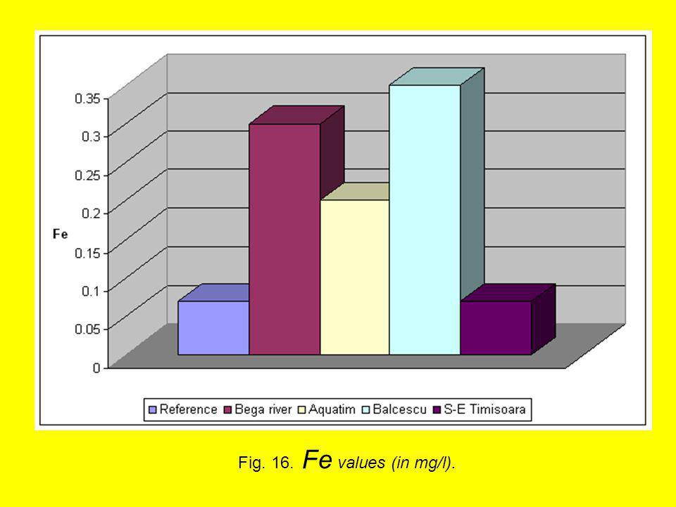 Fig. 16. Fe values (in mg/l).