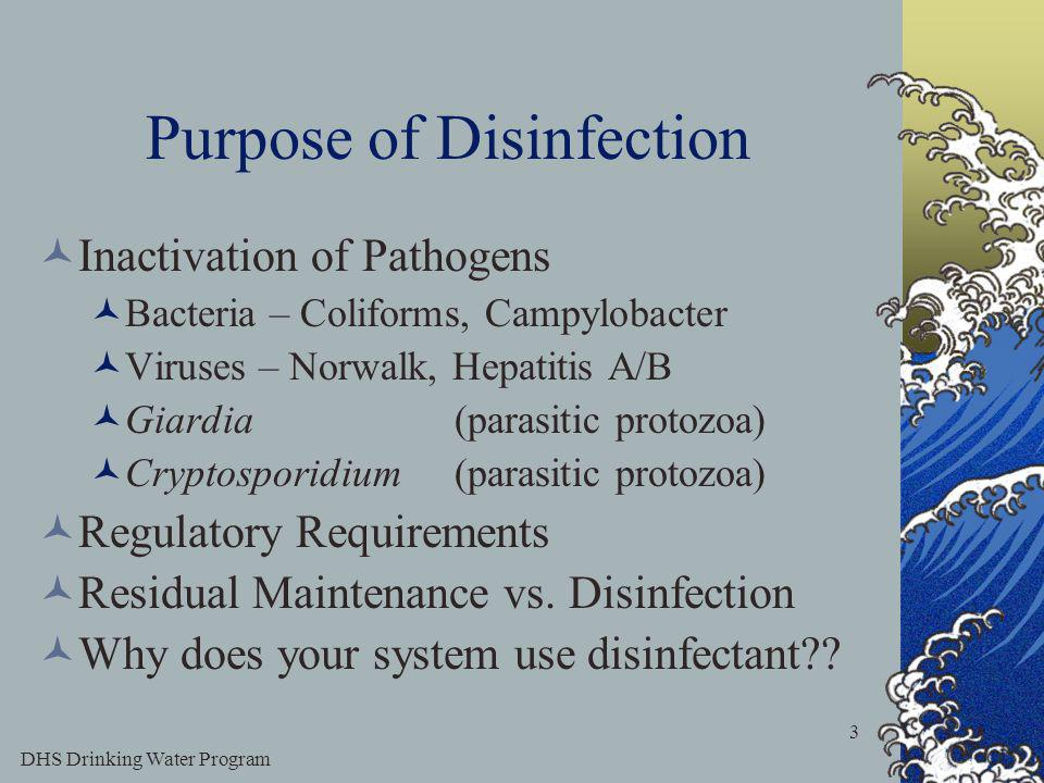 DHS Drinking Water Program 3 Purpose of Disinfection Inactivation of Pathogens Bacteria – Coliforms, Campylobacter Viruses – Norwalk, Hepatitis A/B Giardia (parasitic protozoa) Cryptosporidium(parasitic protozoa) Regulatory Requirements Residual Maintenance vs.