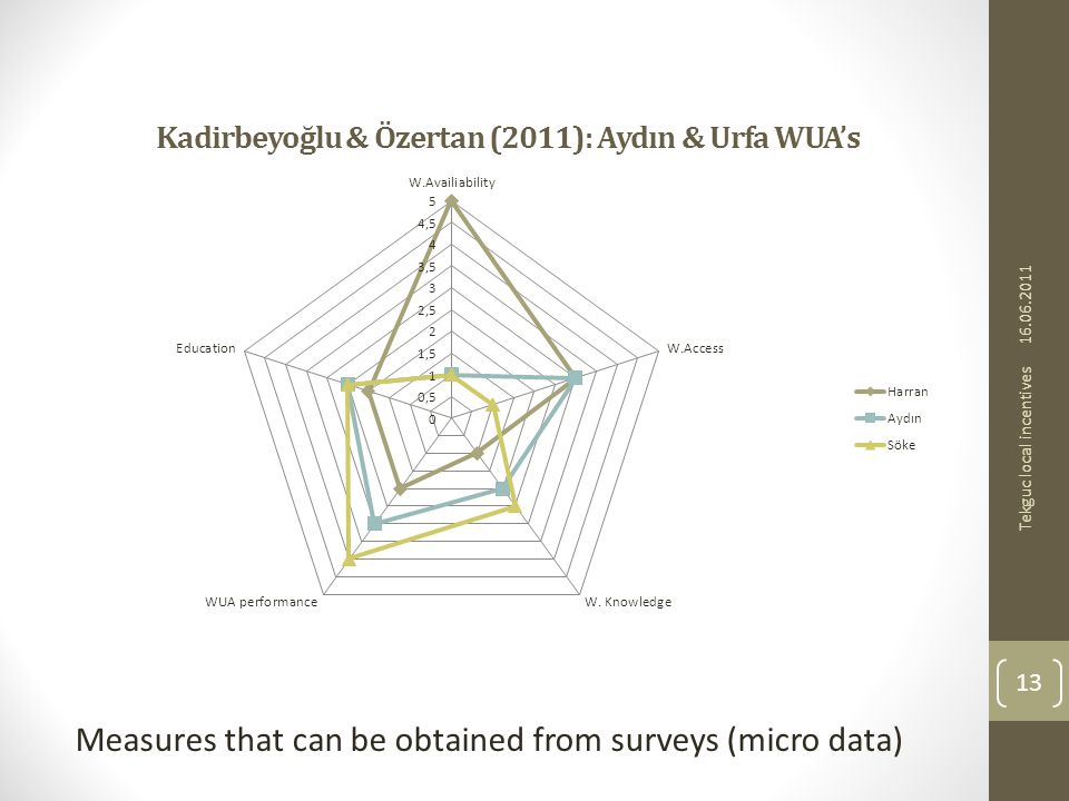 Kadirbeyoğlu & Özertan (2011): Aydın & Urfa WUAs Measures that can be obtained from surveys (micro data) 16.06.2011 13 Tekguc local incentives