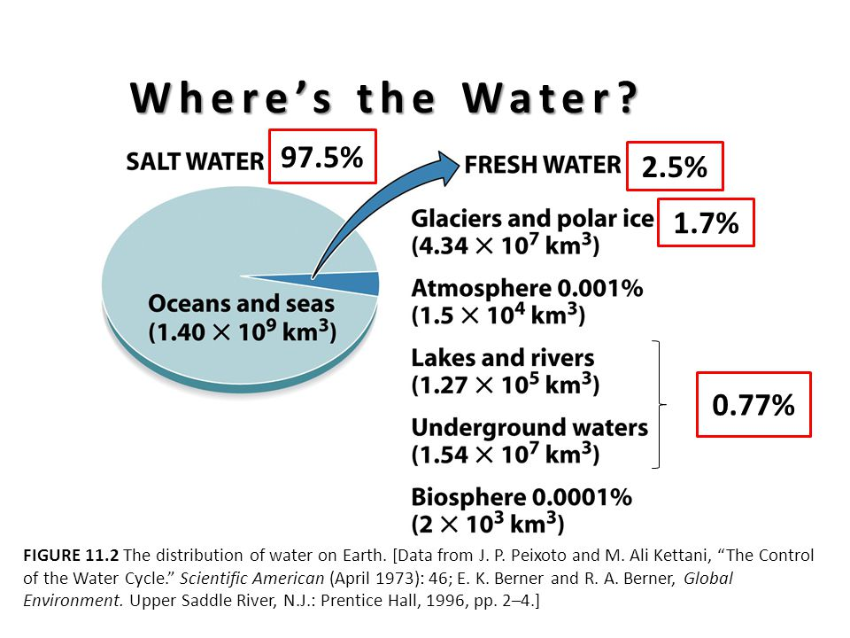 FIGURE 11.2 The distribution of water on Earth. [Data from J.