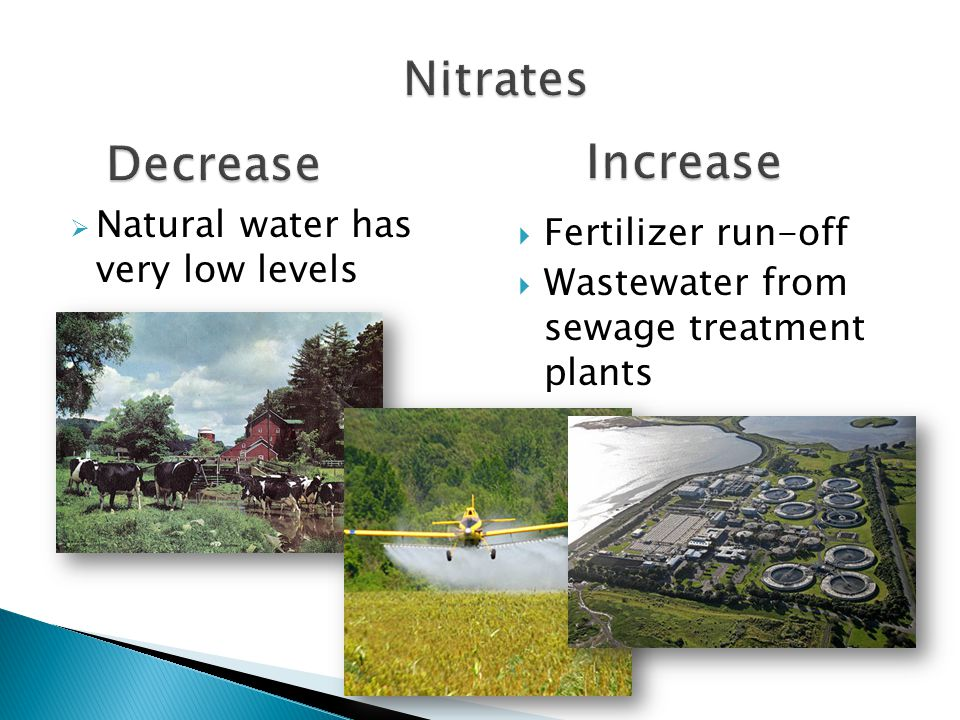 Form of Nitrogen= fertilizer for plants Streams normally have low levels of Nitrates Elevated Nitrate levels can cause: Excessive plant growth-> Large amounts of decay use up oxygen -> Fish and animals suffocate EUTROPHICATION Unsafe drinking water