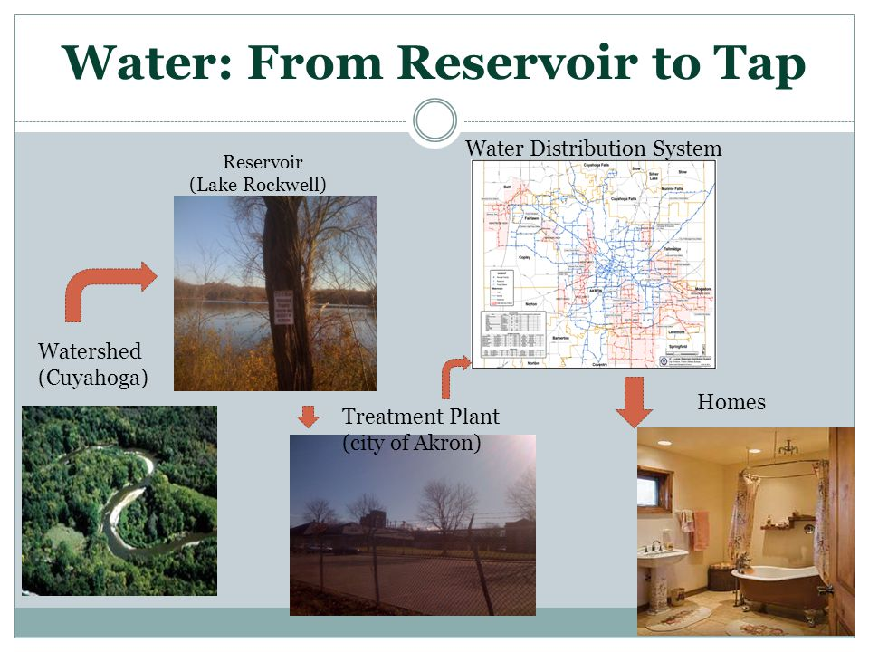 Water: From Reservoir to Tap Watershed (Cuyahoga) Reservoir (Lake Rockwell) Treatment Plant (city of Akron) Water Distribution System Homes
