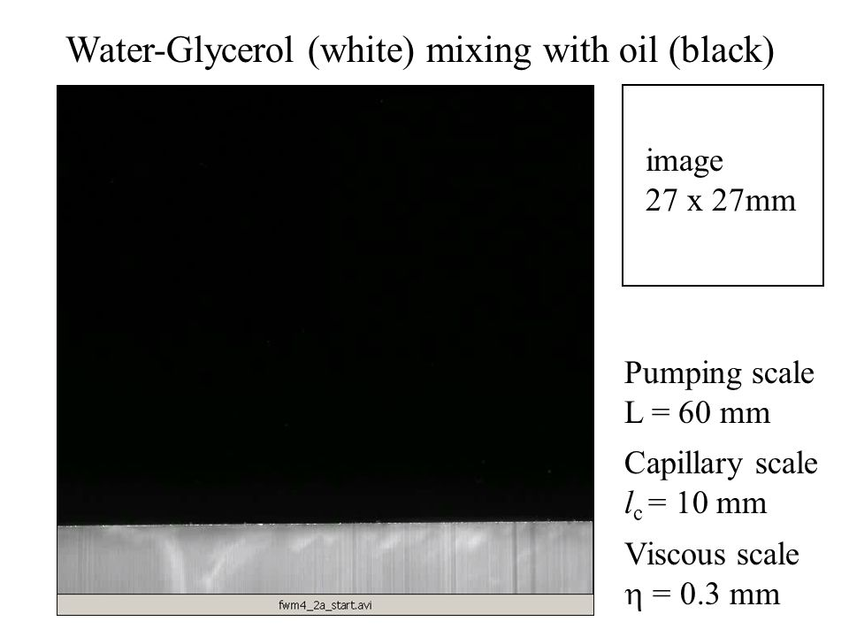 Water-Glycerol (white) mixing with oil (black) image 27 x 27mm Pumping scale L = 60 mm Capillary scale l c = 10 mm Viscous scale = 0.3 mm