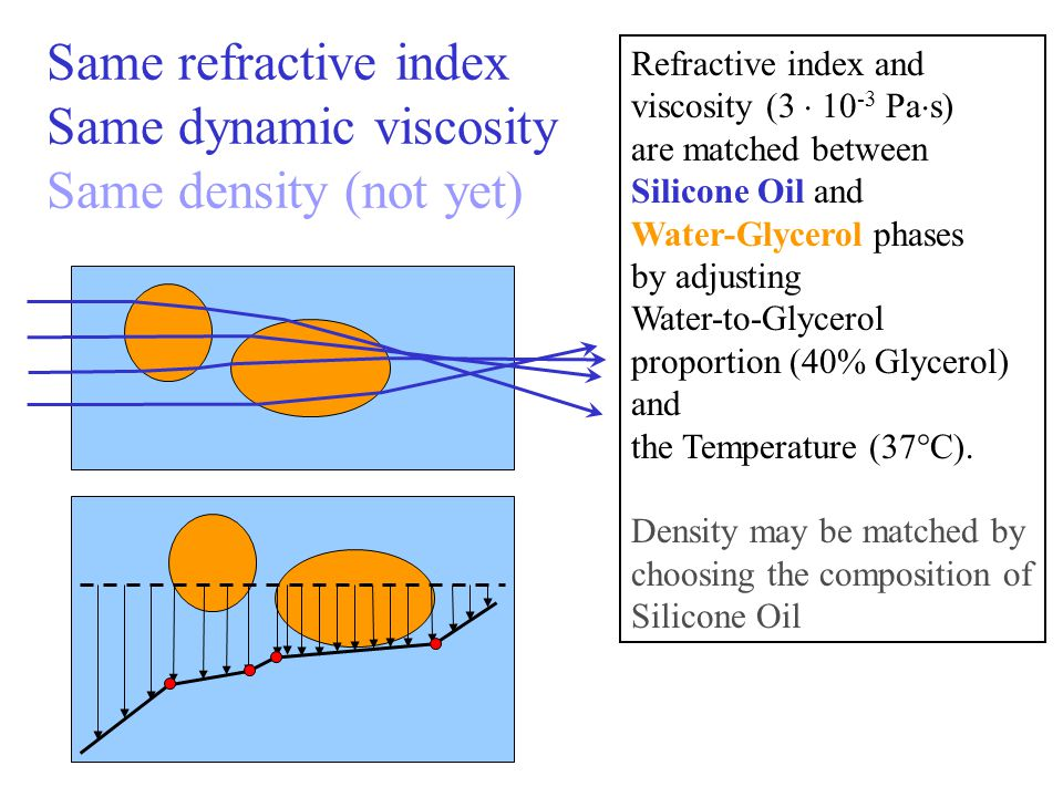 Same refractive index Same dynamic viscosity Same density (not yet) Refractive index and viscosity (3 10 -3 Pa s) are matched between Silicone Oil and Water-Glycerol phases by adjusting Water-to-Glycerol proportion (40% Glycerol) and the Temperature (37°C).