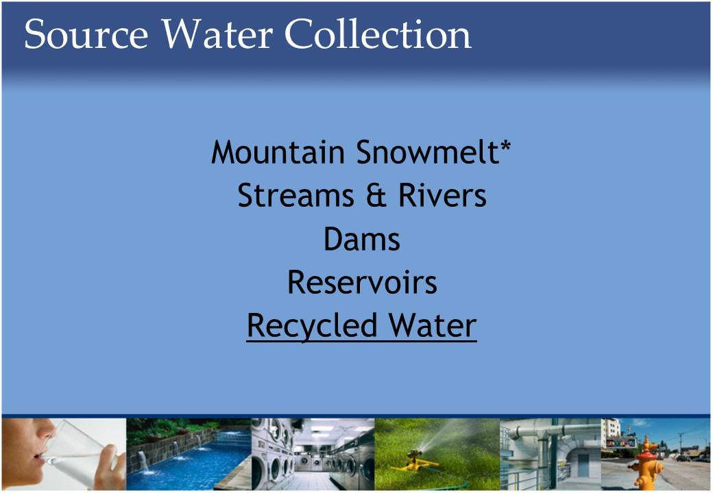 Source Water Collection Mountain Snowmelt* Streams & Rivers Dams Reservoirs Recycled Water