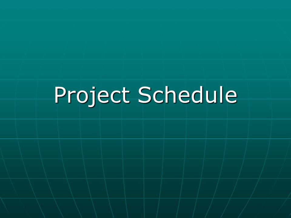 Project Schedule