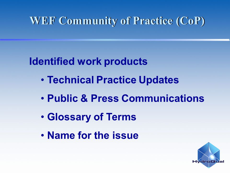Identified work products Technical Practice Updates Public & Press Communications Glossary of Terms Name for the issue WEF Community of Practice (CoP)