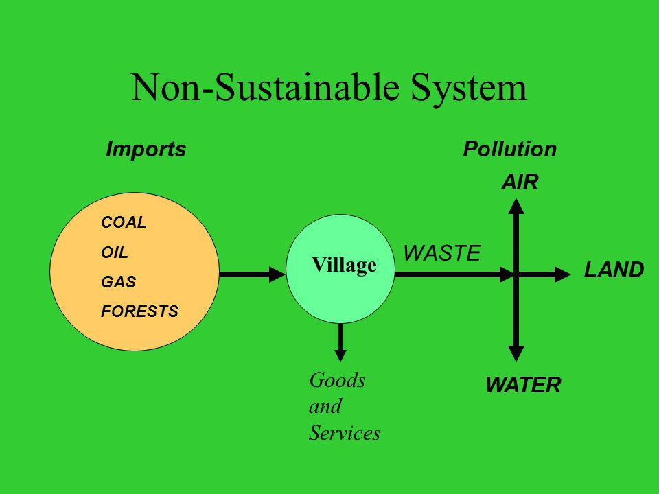 Non-Sustainable System AIR WATER LAND WASTE COAL OIL GAS FORESTS PollutionImports Village Goods and Services