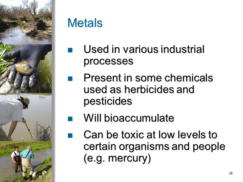 28 Metals Used in various industrial processes Used in various industrial processes Present in some chemicals used as herbicides and pesticides Present in some chemicals used as herbicides and pesticides Will bioaccumulate Will bioaccumulate Can be toxic at low levels to certain organisms and people (e.g.