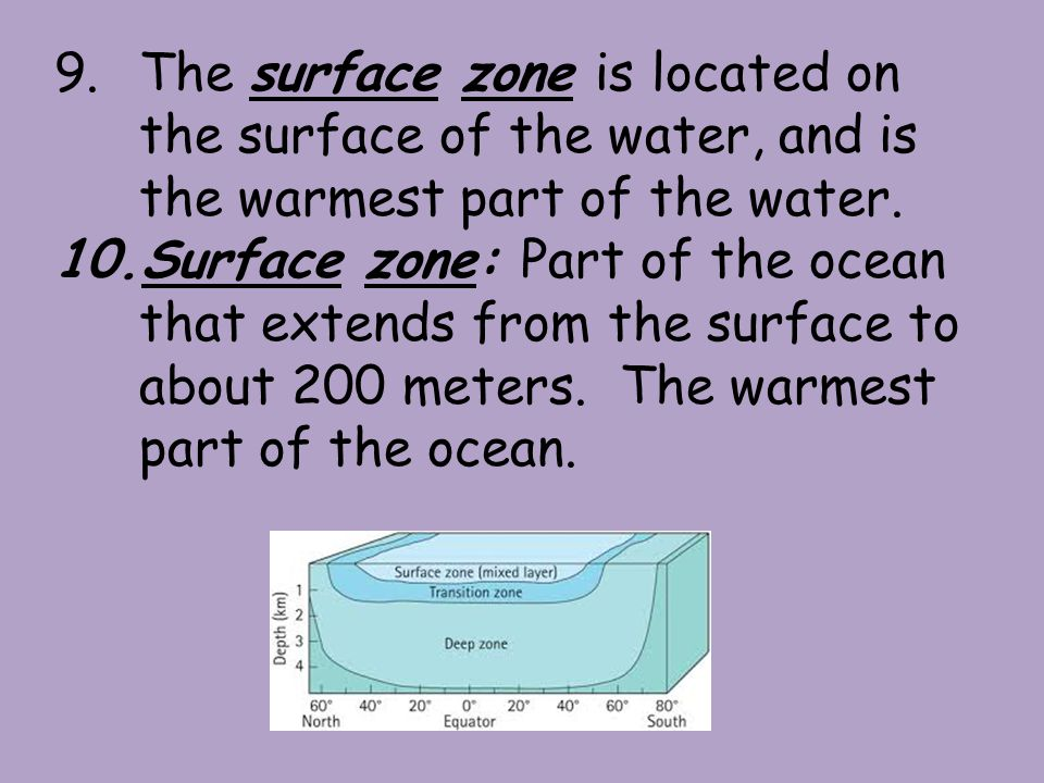 9.The surface zone is located on the surface of the water, and is the warmest part of the water.