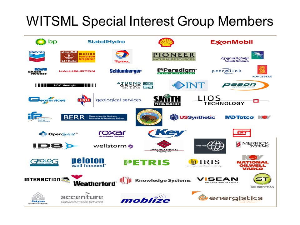 WITSML Special Interest Group Members