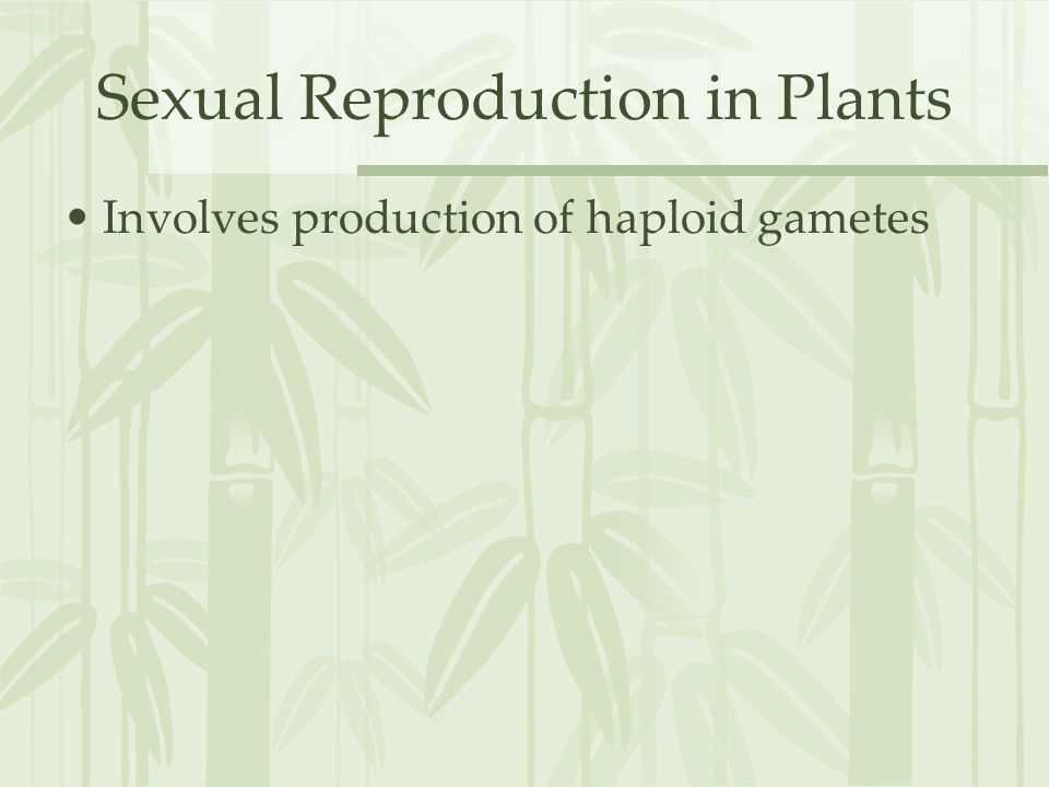 Sexual Reproduction in Plants Involves production of haploid gametes