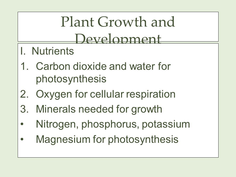 Plant Growth and Development I.