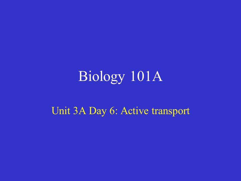 Biology 101A Unit 3A Day 6: Active transport