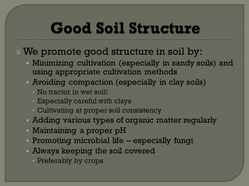 We promote good structure in soil by: Minimizing cultivation (especially in sandy soils) and using appropriate cultivation methods Avoiding compaction (especially in clay soils) No tractor in wet soil.