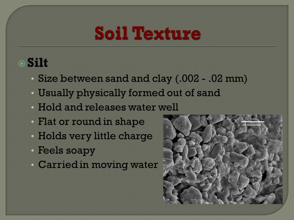 Silt Size between sand and clay (.002 -.02 mm) Usually physically formed out of sand Hold and releases water well Flat or round in shape Holds very little charge Feels soapy Carried in moving water
