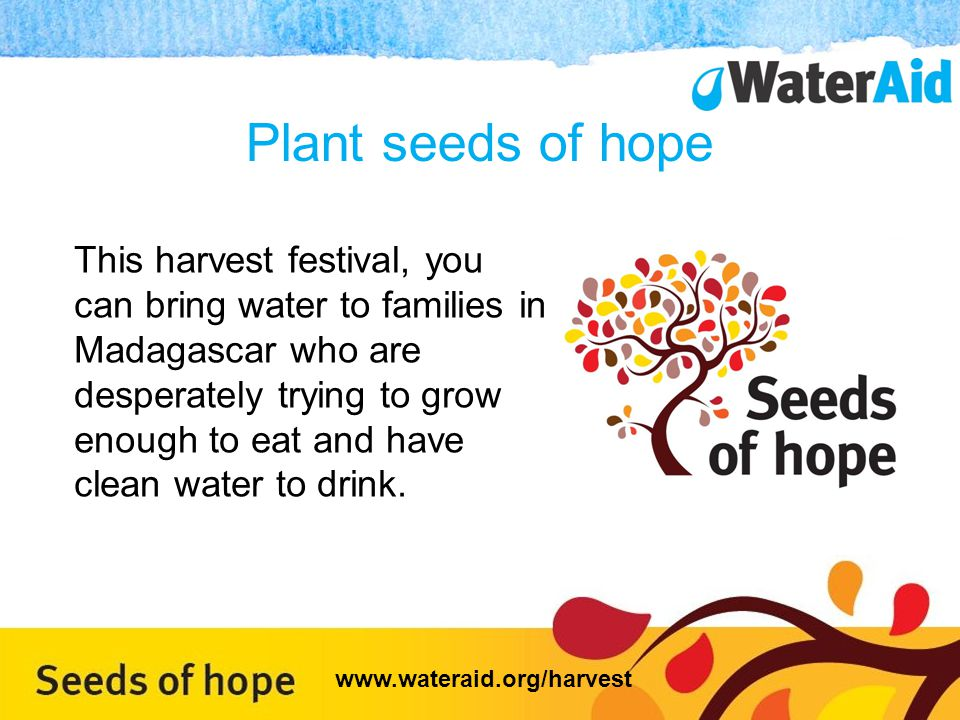 Plant seeds of hope This harvest festival, you can bring water to families in Madagascar who are desperately trying to grow enough to eat and have clean water to drink.