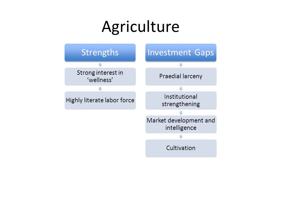 Agriculture Strengths Strong interest in wellness Highly literate labor force Investment Gaps Praedial larceny Institutional strengthening Market development and intelligence Cultivation