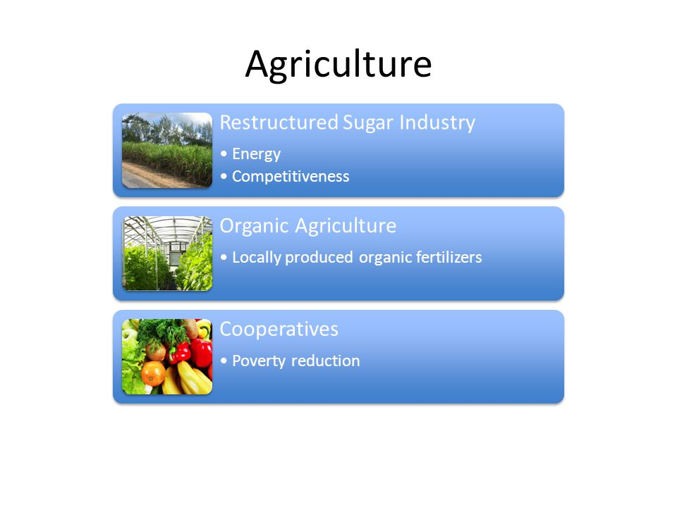 Agriculture Restructured Sugar Industry Energy Competitiveness Organic Agriculture Locally produced organic fertilizers Cooperatives Poverty reduction