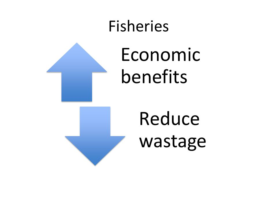 Fisheries Economic benefits Reduce wastage