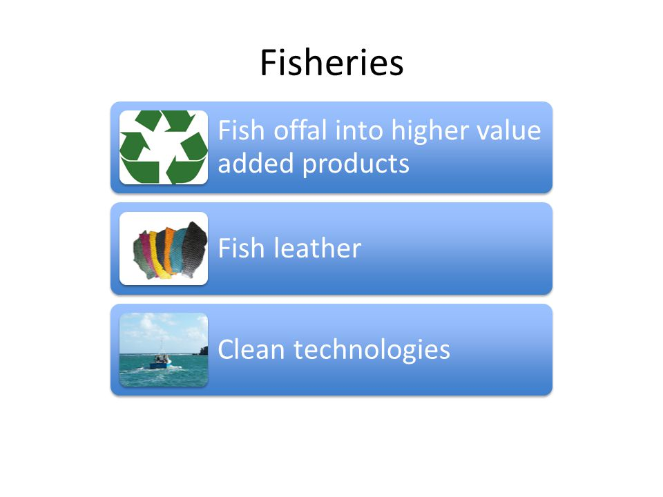 Fisheries Fish offal into higher value added products Fish leather Clean technologies
