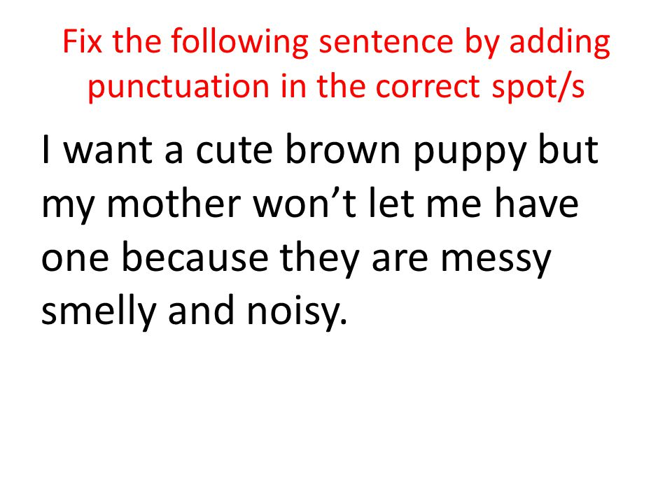 Fix the following sentence by adding punctuation in the correct spot/s I want a cute brown puppy but my mother wont let me have one because they are messy smelly and noisy.