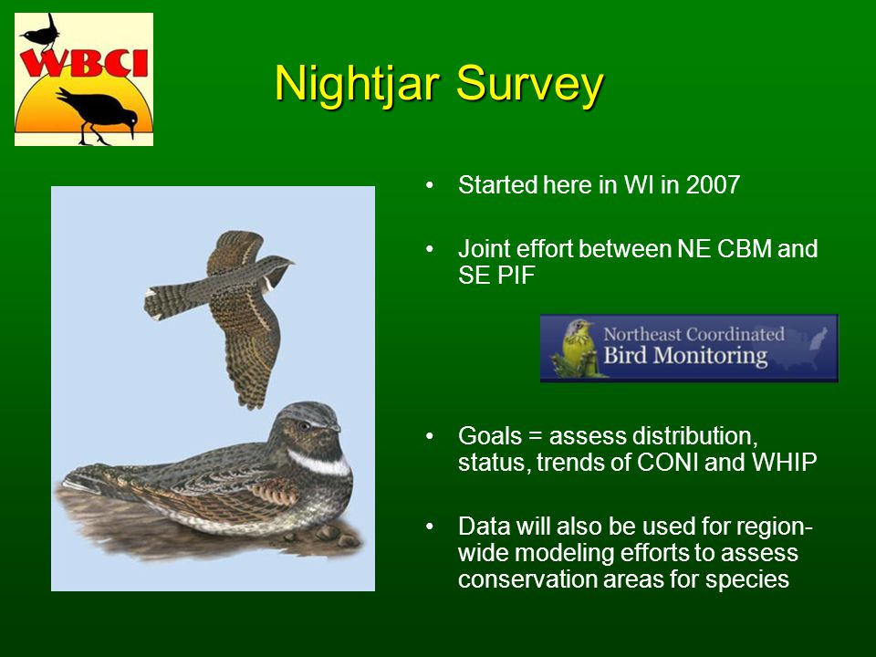 Nightjar Survey Started here in WI in 2007 Joint effort between NE CBM and SE PIF Goals = assess distribution, status, trends of CONI and WHIP Data will also be used for region- wide modeling efforts to assess conservation areas for species