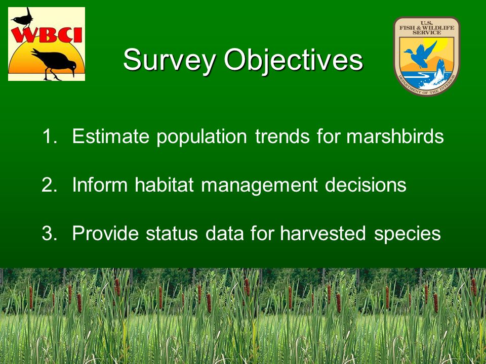 Survey Objectives 1.Estimate population trends for marshbirds 2.Inform habitat management decisions 3.Provide status data for harvested species